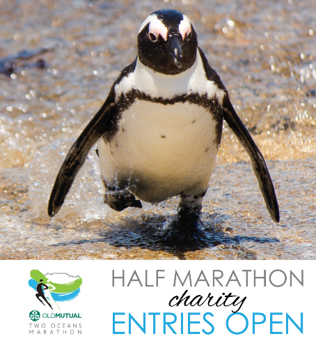 Old Mutal Two Oceans Half Marathon Charity 2019